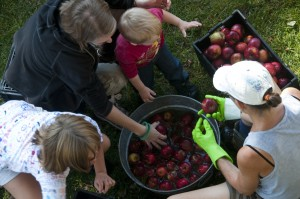 Friends of Hermit Woods Fall Apple Pressing